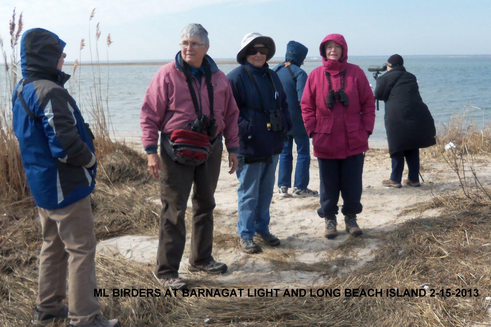 Temperature Barnegat Light Long Long Beach Island